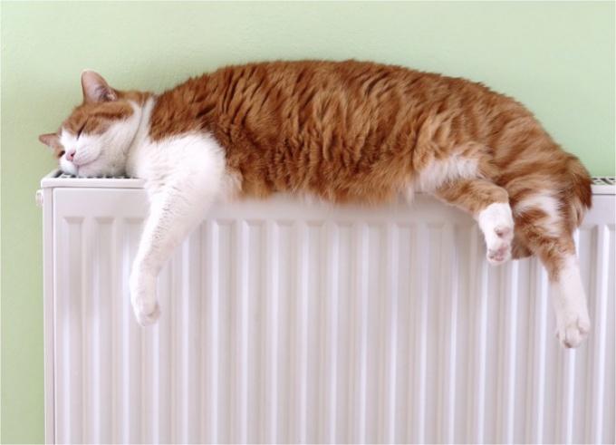 Как выбрать жидкость для системы отопления