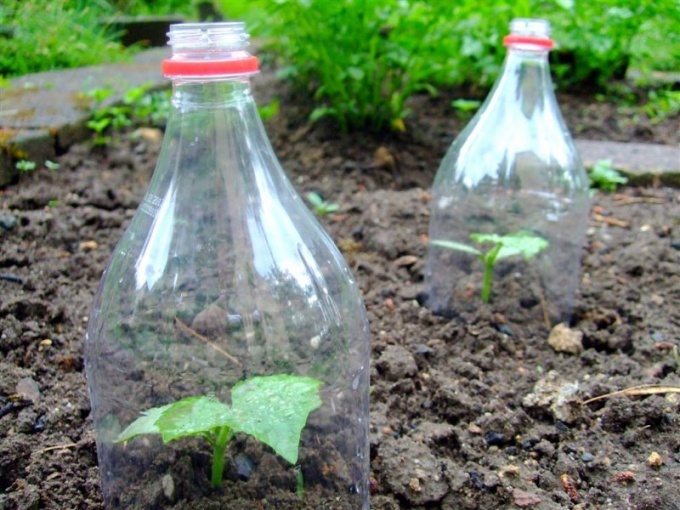 How to use empty plastic bottles