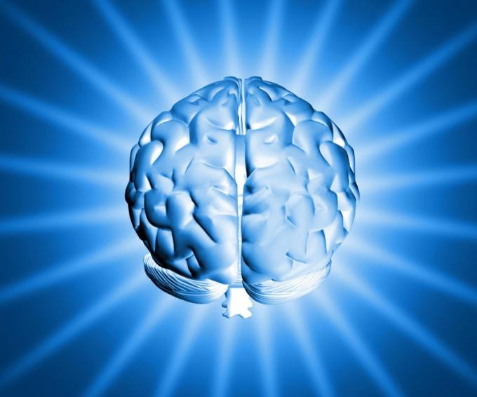 Возможности мозга можно развить