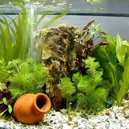 How to make a atomizer for aquarium