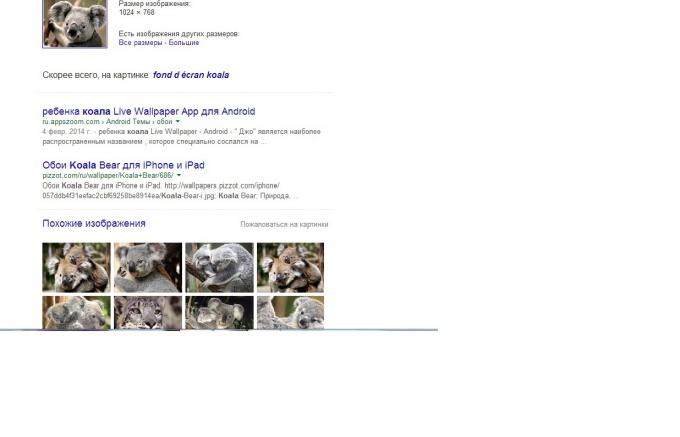 Результат поиска в Гугл по фото