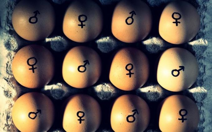 Что такое вторичные половые признаки