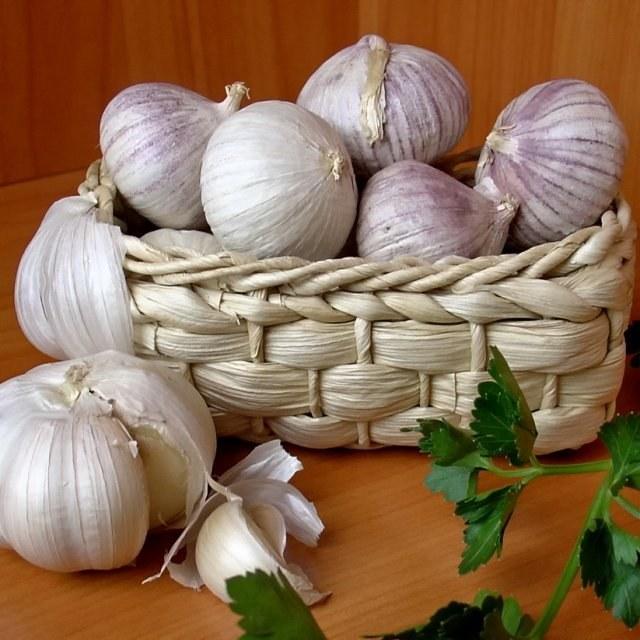 Where to properly store garlic