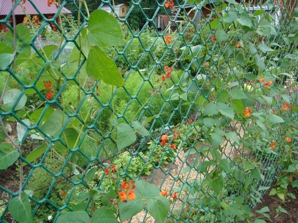 Заборная пластиковая сетка – доступное и практичное ограждение