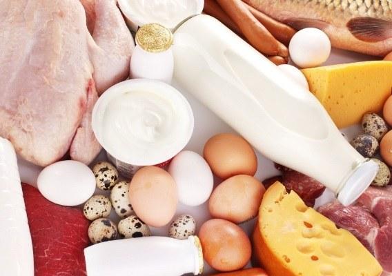 Чем отличается молочный белок от мясного белка