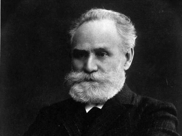 Портрет академика И. Павлова