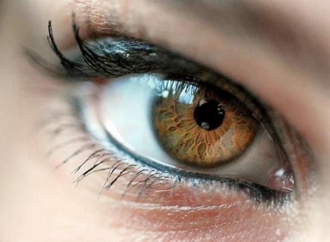 Какой характер у человека с карими глазами