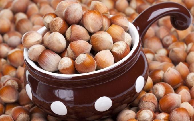 Орех фундук - польза и вред в разных ситуациях