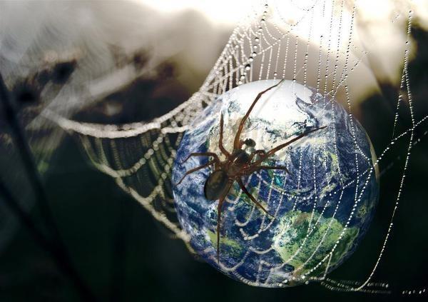 Всемирная паутина: почему интернет так называют