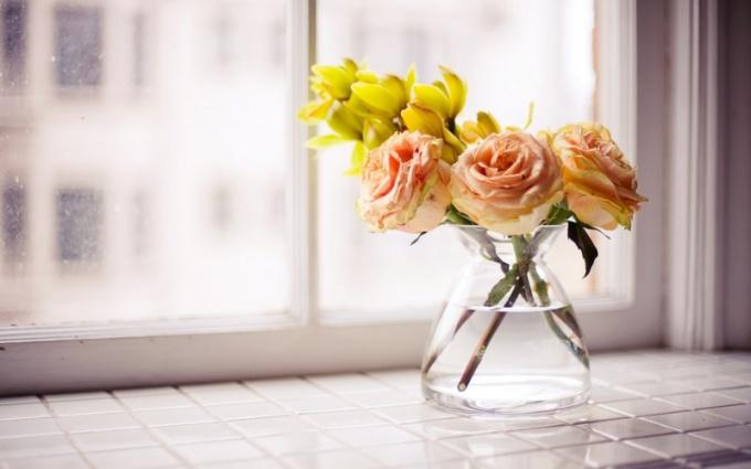 Что надо добавлять в воду, чтобы цветы дольше стояли?