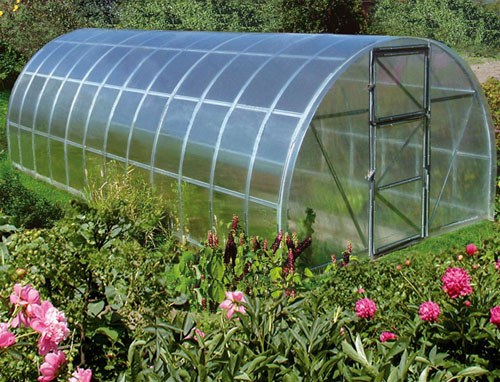 Is it possible to put in one greenhouse cucumber and pepper?