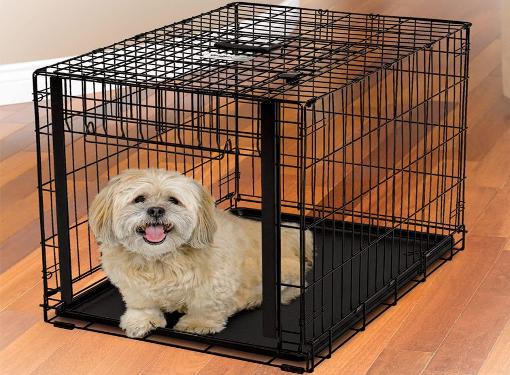 Клетка для собаки: роскошь или необходимость