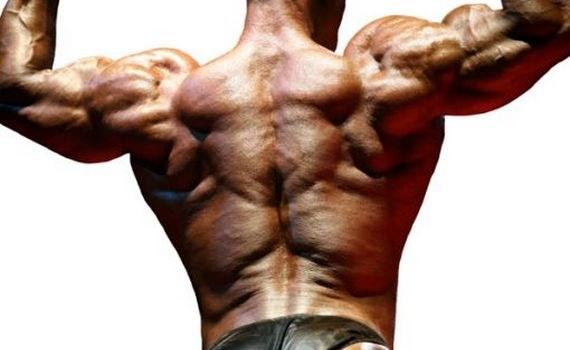 Трапеция – мышца, которую мы не видим в зеркале