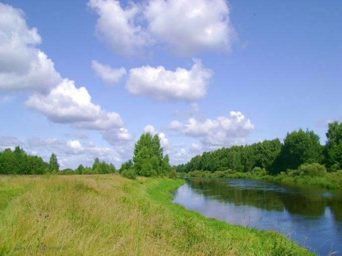 Восточно-европейская равнина: основные характеристики