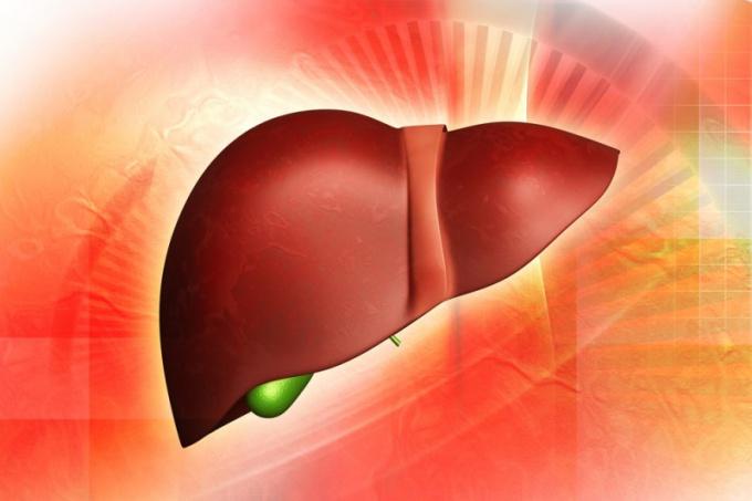 Как болит печень при гепатите