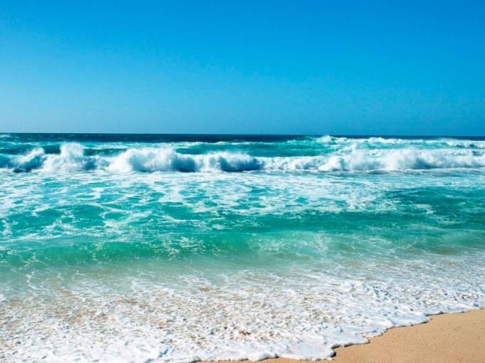 Сколько океанов существует