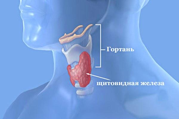 Почему болит щитовидная железа