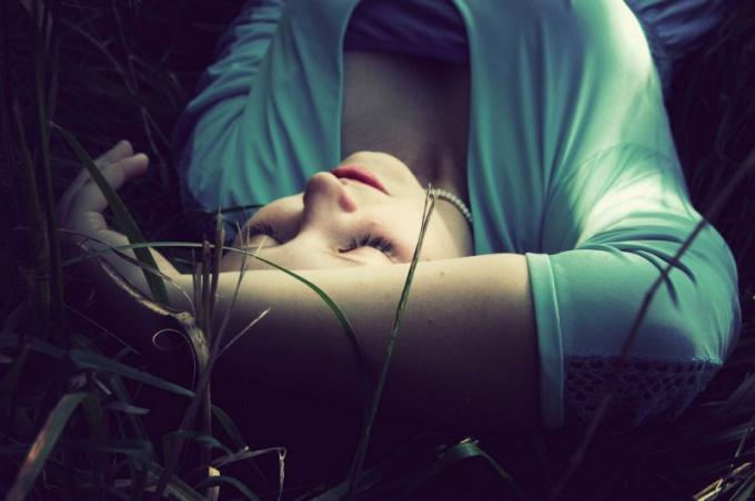 Какие травы пить для крепкого сна