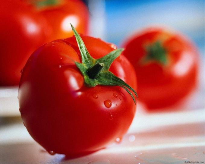Томат Ля-ля-фа – среднеранний гибрид для выращивания в теплицах