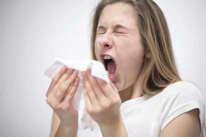 Аллергическое чихание - опасно ли оно для окружающих