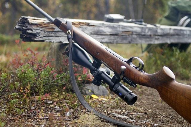 Ружье наготове