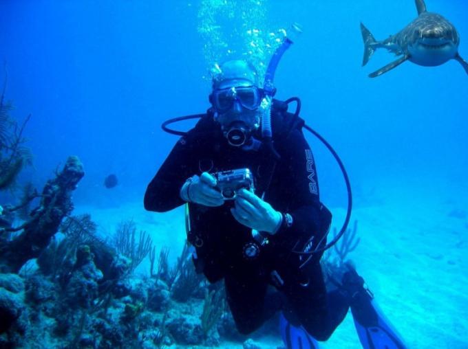 Как заняться подводной охотой