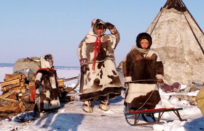 Кто населяет Север России