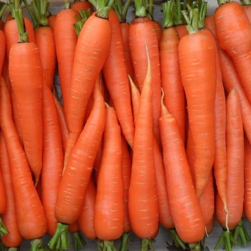 Какая морковь по форме