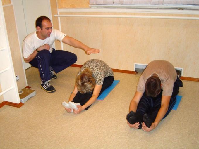 Движение - функция скелетных мышц