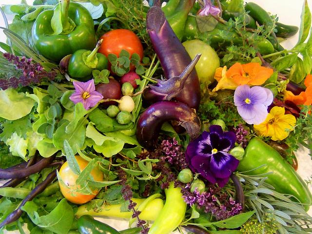 Как собрать и сохранить урожай