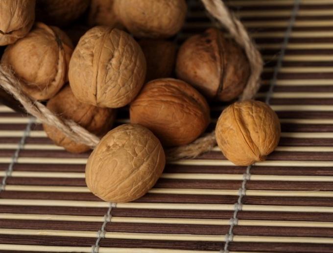 Чем полезны перегородки грецких орехов