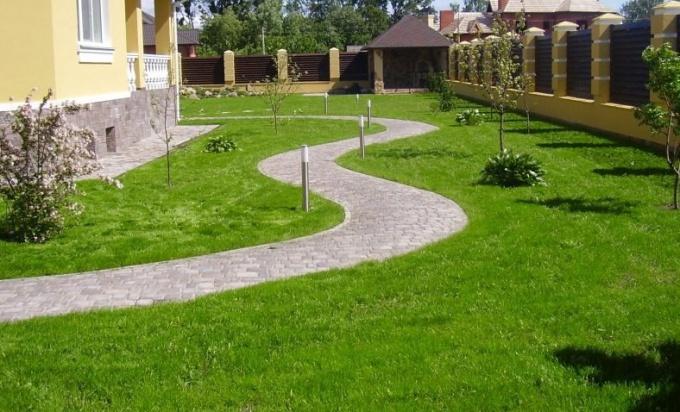 Красивый газон - главное украшение участка.