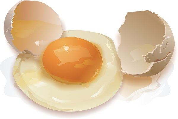 Where there is more protein in the yolk or in the whites
