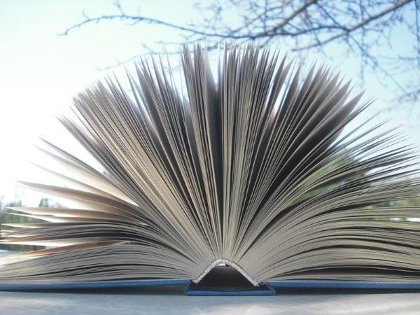 Образовательное право, его источники и принципы