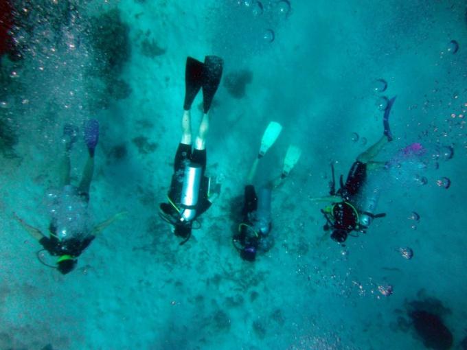 Подводная охота с аквалангом запрещена во многих странах