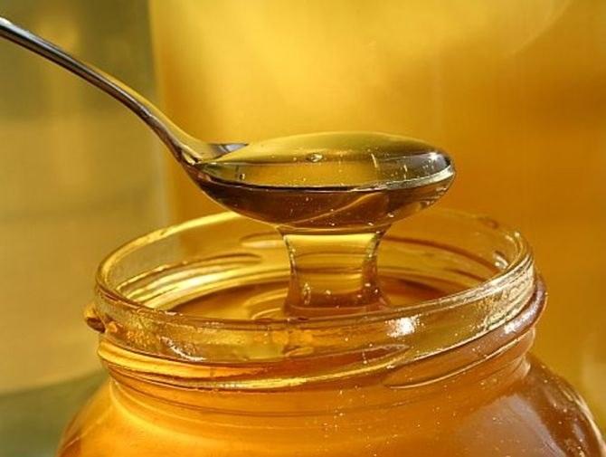 Чем полезен горчичный мед