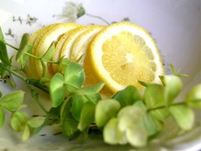 Что такое лимонно-эвкалиптовая противопаразитарная чистка