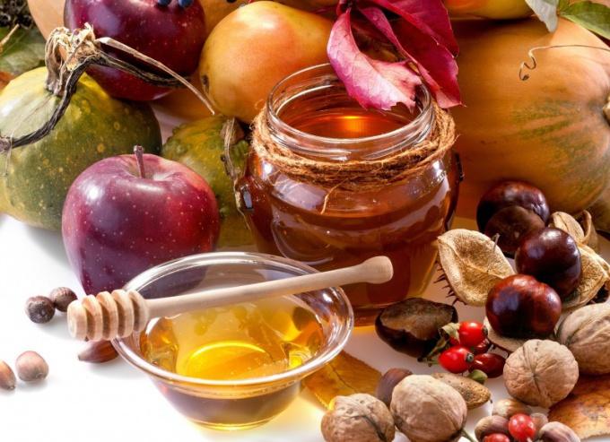 Мед с орехами: польза и правила употребления