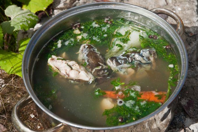 Рецепт супа из рыбьих голов