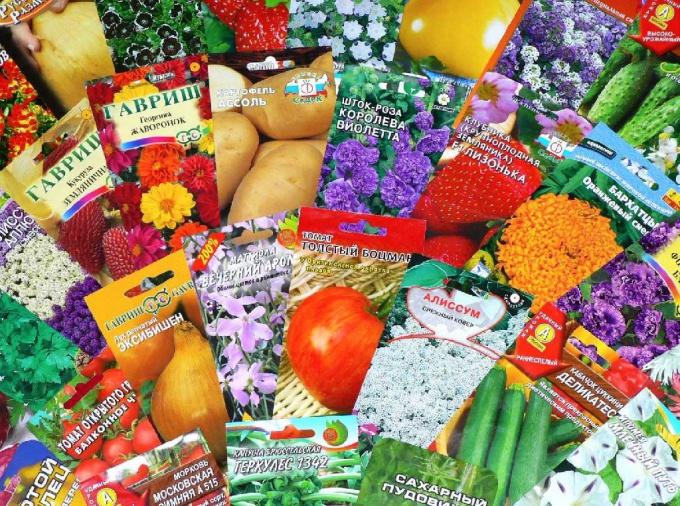 Как удачно купить семена овощей и цветов