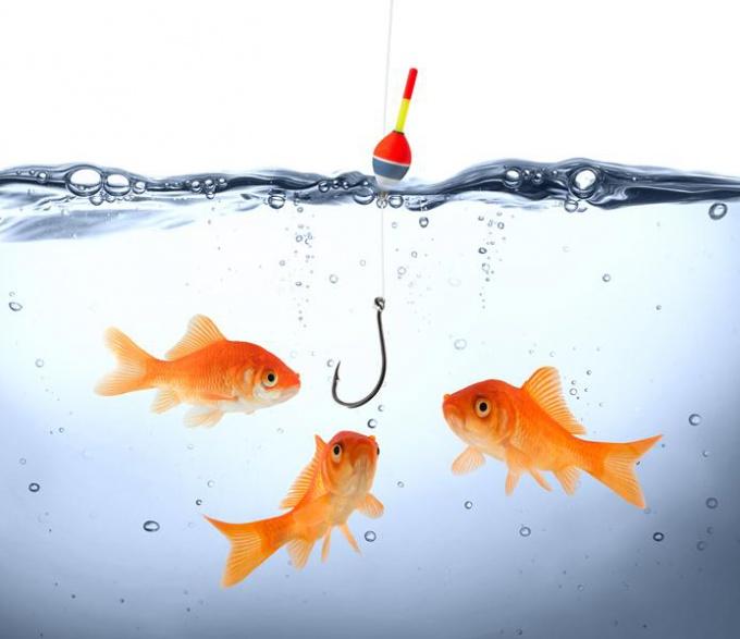 В чем заключается ценность рыбы