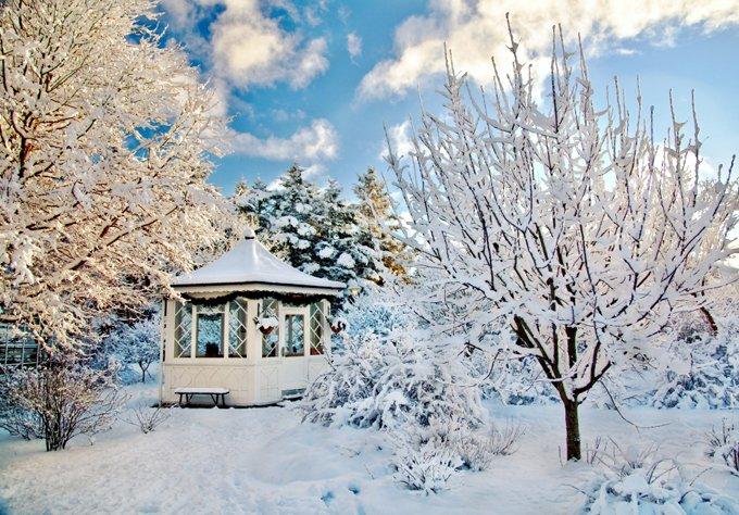 Что делать на даче в феврале: работы на огороде и в саду