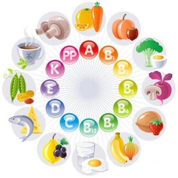 Витамины и продукты в которых они есть