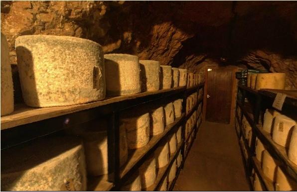 Сырные головки, покрытые тканью и плесенью, вызревают в подвале.