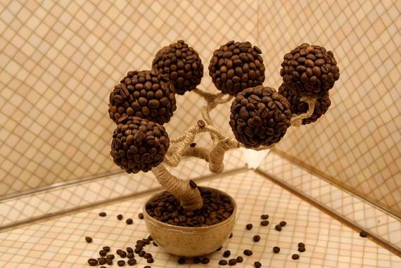 Поделки фото кофейное дерево