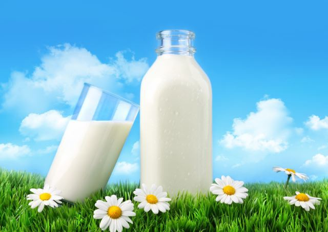 How to use milk in the garden