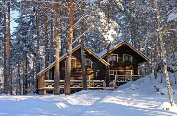 Как провести зимние каникулы на Алтае