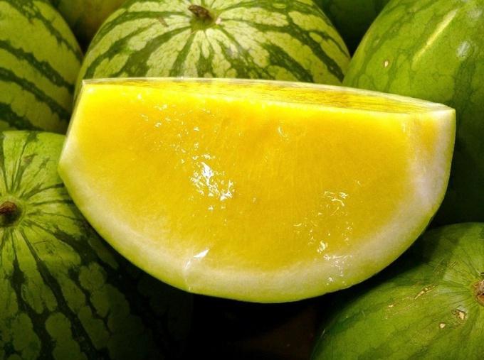 Желтый арбуз