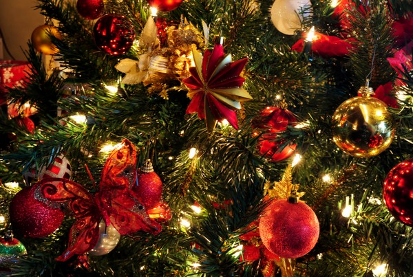 Как можно дольше сохранить новогоднюю елку