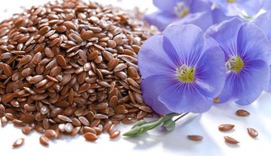 Семя и цветок льна